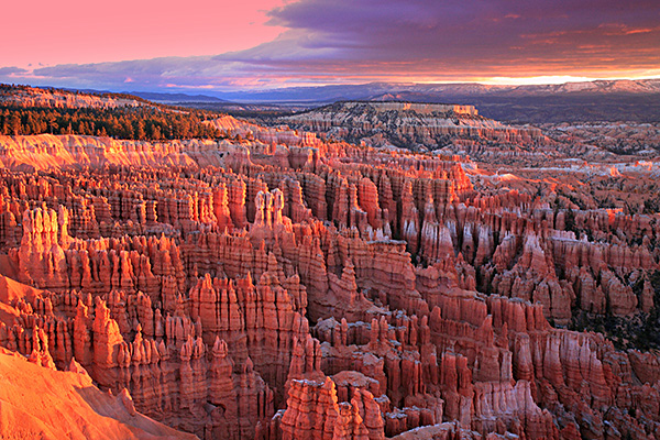 National Park Tour: Bryce and Zion